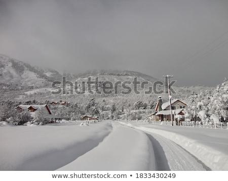 Stockfoto: Winter · berg · landschap · bomen · bewolkt