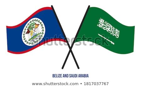 Szaúd-Arábia Belize zászlók puzzle izolált fehér Stock fotó © Istanbul2009