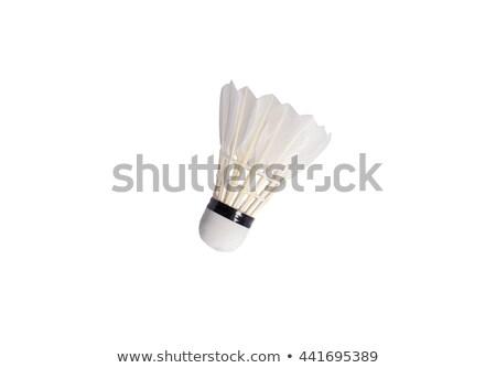 Plumes isolé blanche sport été amusement Photo stock © tetkoren