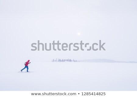 Storms in Scandinavia Stock photo © Harlekino