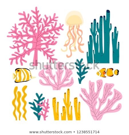 Underwater card with tropical fish, vector illustration Stock photo © carodi
