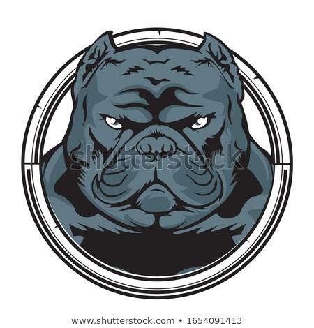Angry Bulldog Head Circle Cartoon Stock photo © patrimonio