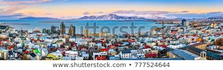 festői · út · Izland · égbolt · fű · tájkép - stock fotó © vichie81