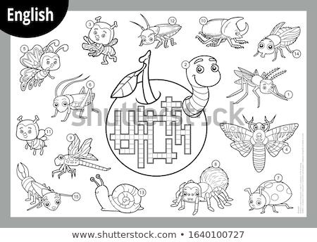 Palavra insetos besouro borboleta jardim ilustração Foto stock © bluering
