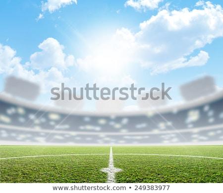 White marking on green grass at football stadium Stock photo © wavebreak_media