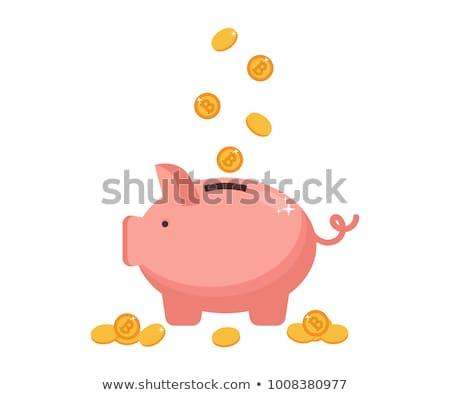 бит монетами деньги свинья изолированный Сток-фото © compuinfoto