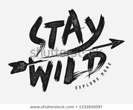 Blijven wild cute badge berg landschap Stockfoto © zsooofija