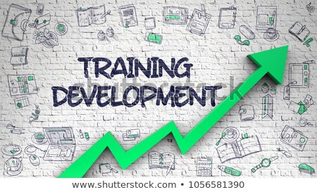 Training Consultancy Drawn on White Brickwall. 3d Stock photo © tashatuvango