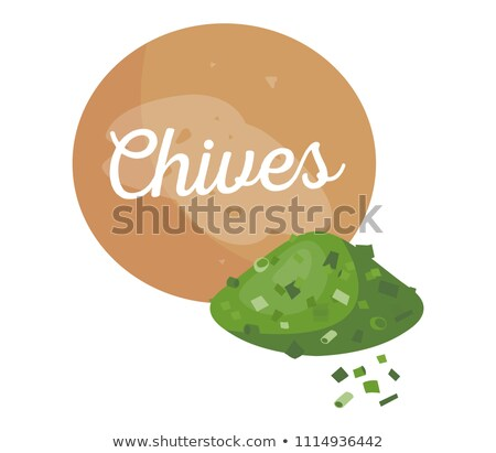 Chives Banner and Title Spice Vector Illustration Stock photo © robuart