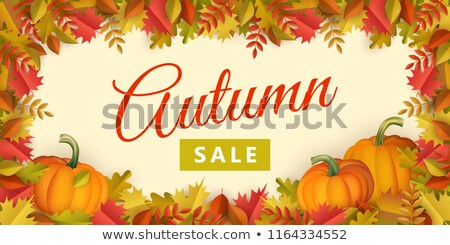 Season sale banner with fall leaves, pumpkin and rowan Stock photo © TasiPas
