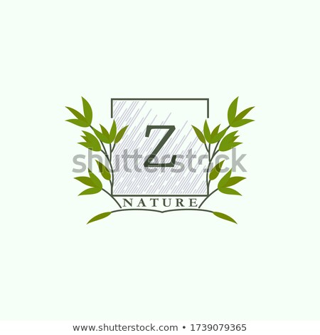 green square logo letter z logotype z vector icon Stock photo © blaskorizov