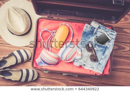 Fille plage bagages illustration design fond Photo stock © bluering