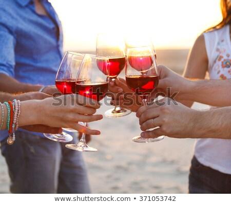 Making a toast on the beach Stock photo © iko
