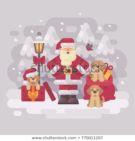 Дед Мороз три щенки сумку представляет Сток-фото © IvanDubovik