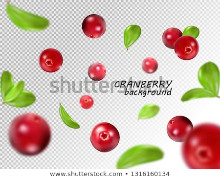 Cranberry, four berries, paths Stock photo © maxsol7