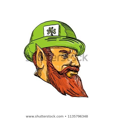 Leprechaun Head Side Drawing Stock photo © patrimonio