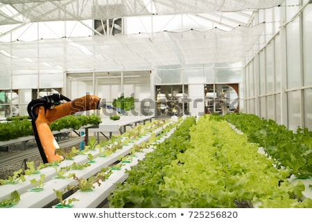 Agriculteur travail ferme machines outils Photo stock © robuart