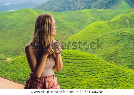 Young woman Drinking Healthy Green Tea against a tea plantation. Healthcare or Herbal medicine conce Stock photo © galitskaya