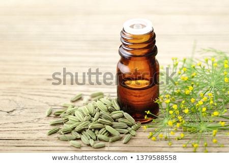 Finocchio semi bottiglia legno superficie Foto d'archivio © bdspn