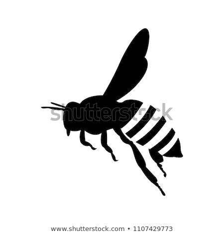 cute bee silhouette set stock photo © blue_daemon