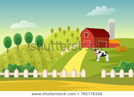 mucca · campo · illustrazione · rosolare · albero · erba - foto d'archivio © makyzz