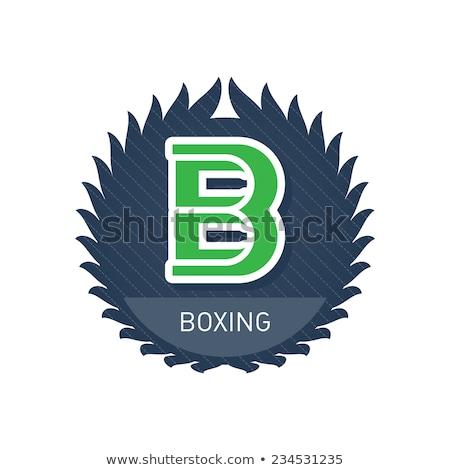 Levél box fehér háttér sportok oktatás Stock fotó © colematt