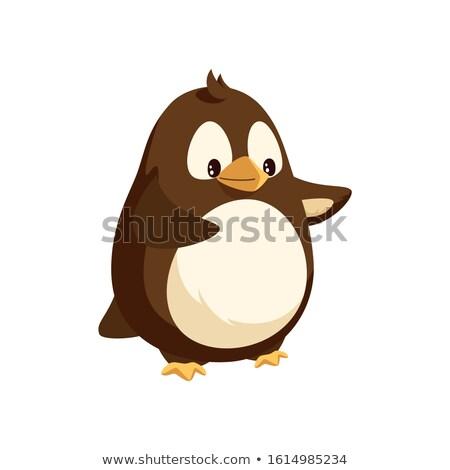 Pinguim olhando distância caminhada isolado ícone Foto stock © robuart
