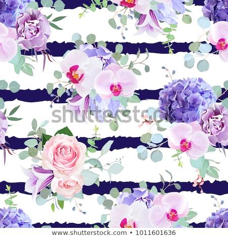 pattern with flowers irises on the striped background stock photo © margolana