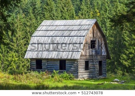 Stock photo: Little Shed In Mountains