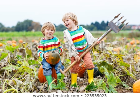 A Smiling toddler boy with pumpkin on cold autumn day Stock photo © Lopolo
