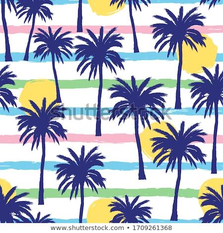 Foto stock: Coco · palms · varanda · ver · oceano
