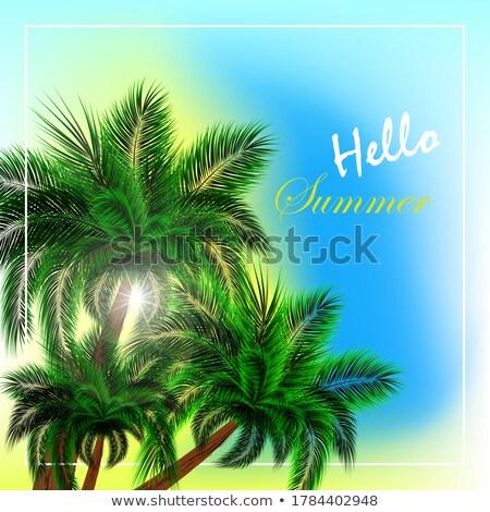 красивой Тропический остров Blue Sky дерево пейзаж фон Сток-фото © Witthaya
