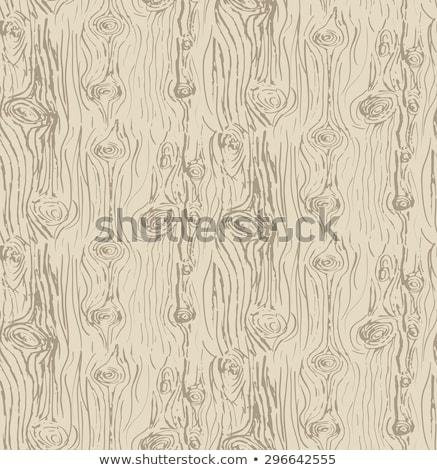 kuru · ağaç · havlama · doku · arka · soyut - stok fotoğraf © leonardi