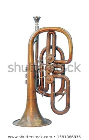 Old trumpet Stock photo © Marfot