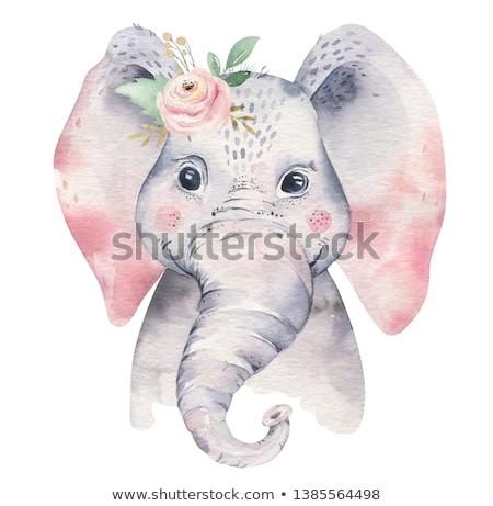 Desenho animado elefante flor azul água Foto stock © anna_tseliuba