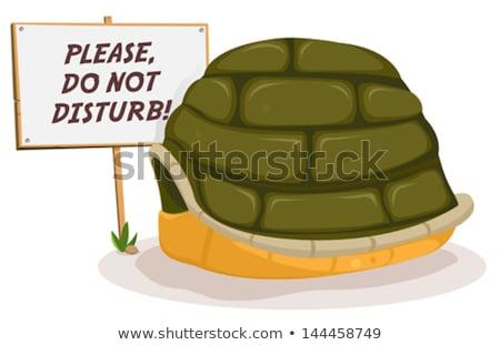 Do Not Disturb Turtle Sleeping Stock photo © benchart