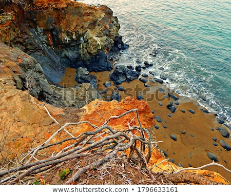 Rock Bluff Oregon State Scenic Landscape Pacific Ocean Coastal B Stock photo © cboswell