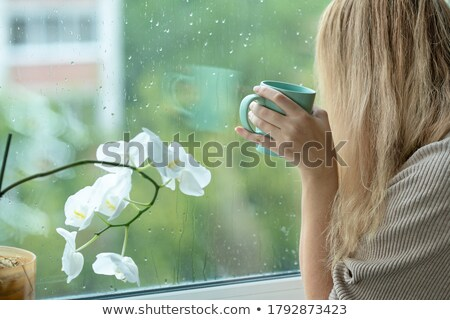 Woman on windowsill looking outdoor on street Stock photo © vetdoctor