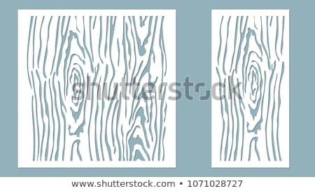 pattern of bark on tree Stock photo © meinzahn