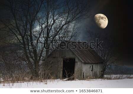 abandoned shack in the field Stock photo © Kayco