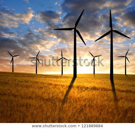 wind power plant in wheat grain field Stock photo © Kayco