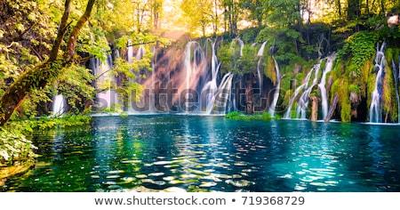 водопада Хорватия дерево пейзаж красоту лет Сток-фото © lightpoet