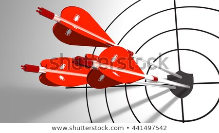 Data Security - Arrows Hit in Target. Stock photo © tashatuvango