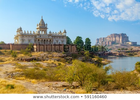 jodhpur india   jaswant thada and fort stock photo © mikko