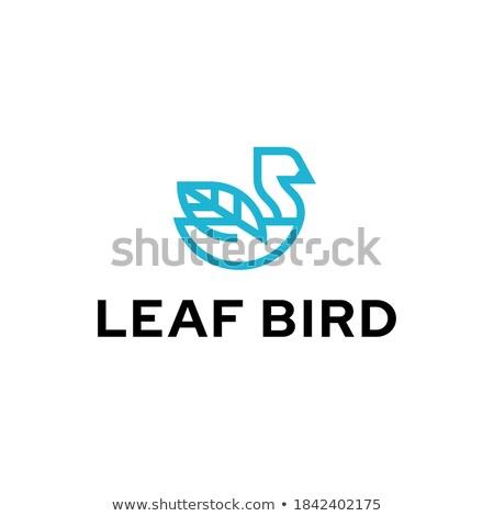 Umweltfreundlich grünen Vektor Symbol Design Blatt Stock foto © rizwanali3d