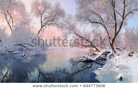 Winter landscape with trees, covered with hoarfrost and lake  Stock photo © AlisLuch