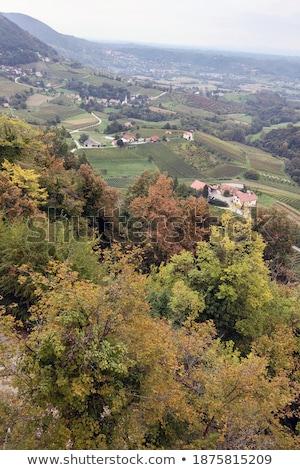 Autumn view of a mountain settlement Stock photo © Kotenko