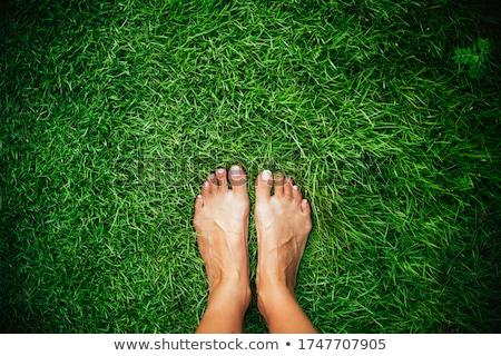 Boso trawy kobieta wolna trawnik Zdjęcia stock © wavebreak_media