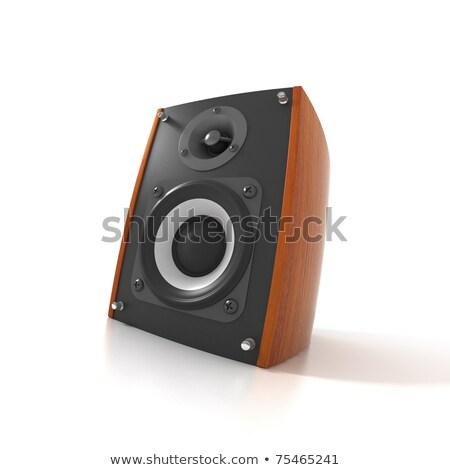 two great loud speakers stock photo © shutswis