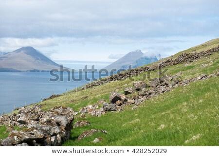 vue · eau · herbe · mer · fond · vert - photo stock © Arrxxx